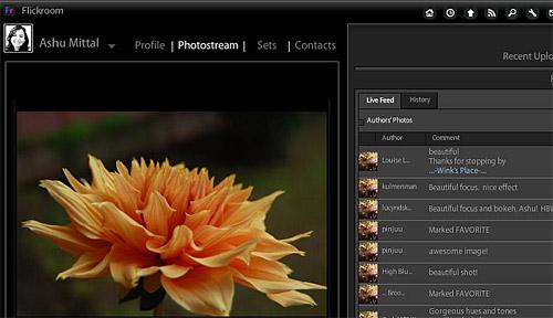 Flickroom: desktop Flickr photoviewer