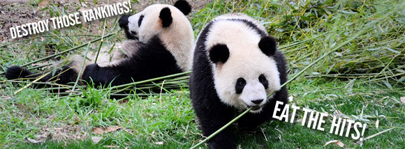Google's evil 'Panda' search engine update wreaks havoc on UK websites
