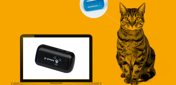 Track where your pet cat roams at night witha G-Paws GPS gizmo